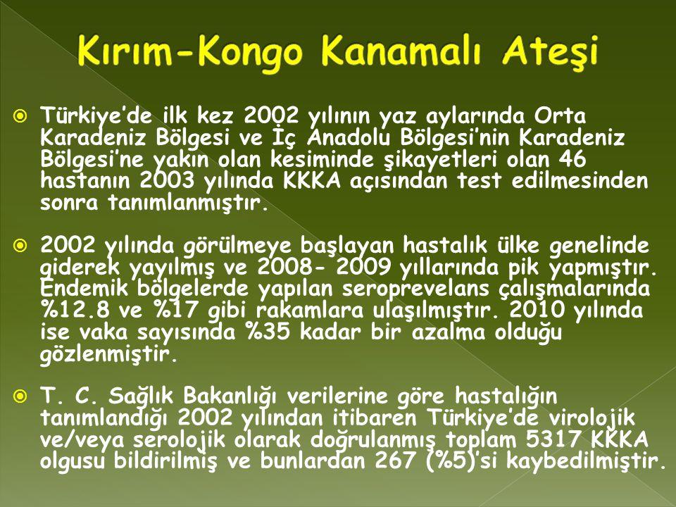  Türkiye'de ilk kez 2002 yılının yaz aylarında Orta Karadeniz Bölgesi ve İç Anadolu Bölgesi'nin Karadeniz Bölgesi'ne yakın olan kesiminde şikayetleri olan 46 hastanın 2003 yılında KKKA açısından test edilmesinden sonra tanımlanmıştır.