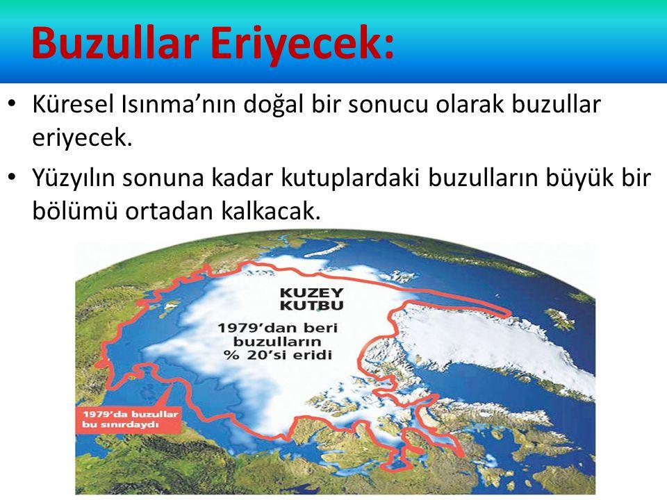 Buzullar Eriyecek: Küresel Isınma'nın doğal bir sonucu olarak buzullar eriyecek. Yüzyılın sonuna kadar kutuplardaki buzulların büyük bir bölümü ortada