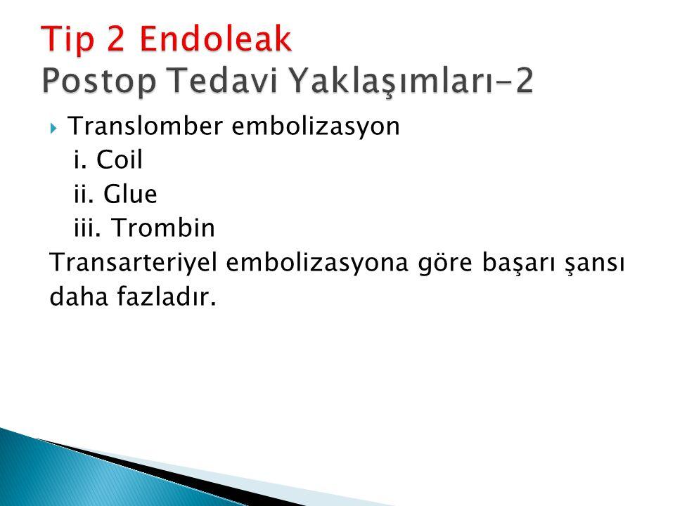  Translomber embolizasyon i. Coil ii. Glue iii. Trombin Transarteriyel embolizasyona göre başarı şansı daha fazladır.