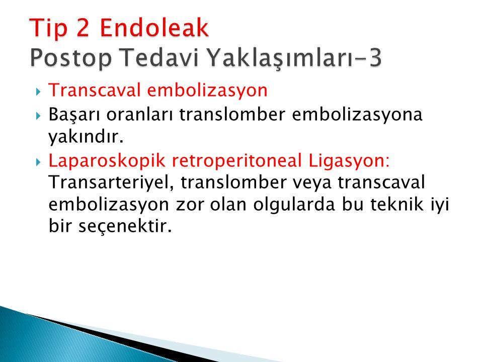  Transcaval embolizasyon  Başarı oranları translomber embolizasyona yakındır.  Laparoskopik retroperitoneal Ligasyon: Transarteriyel, translomber v