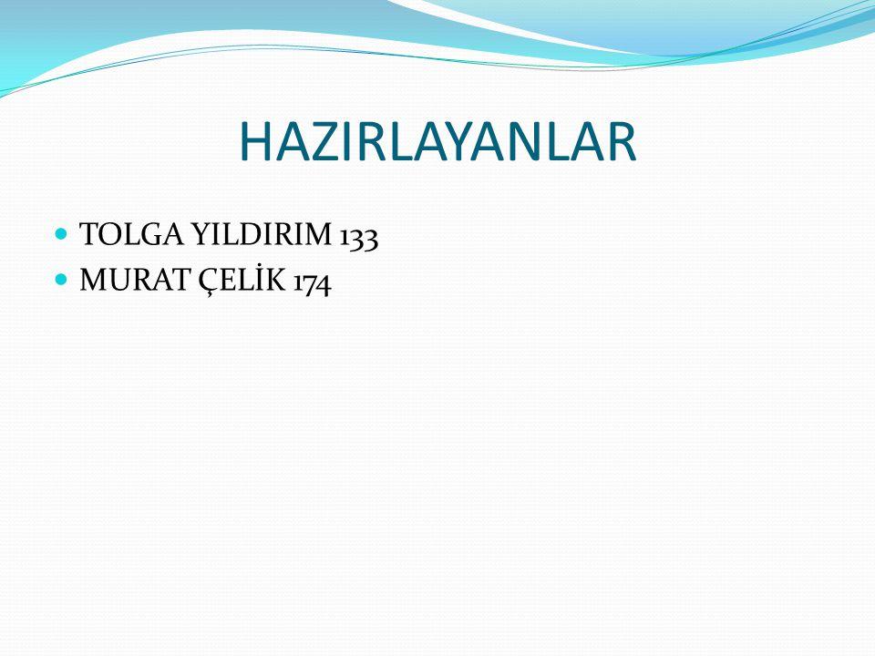 HAZIRLAYANLAR TOLGA YILDIRIM 133 MURAT ÇELİK 174