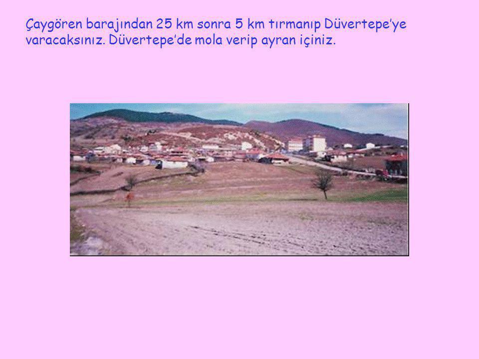 Çaygören barajından 25 km sonra 5 km tırmanıp Düvertepe'ye varacaksınız. Düvertepe'de mola verip ayran içiniz.