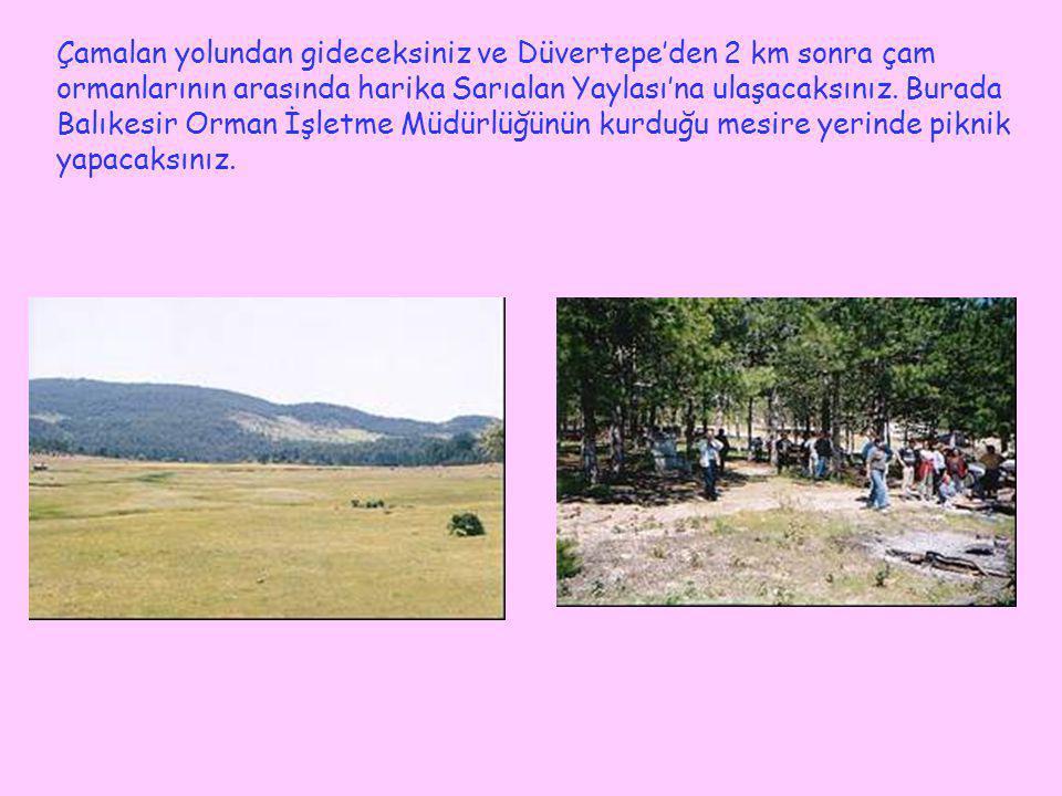 Çamalan yolundan gideceksiniz ve Düvertepe'den 2 km sonra çam ormanlarının arasında harika Sarıalan Yaylası'na ulaşacaksınız. Burada Balıkesir Orman İ