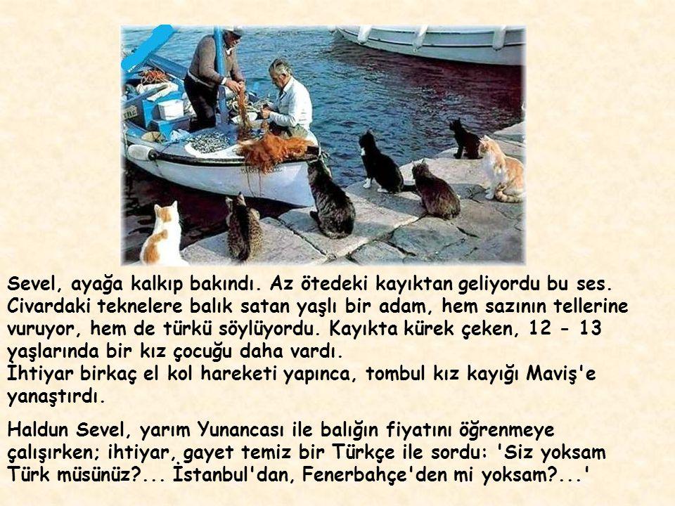 Haldun Sevel, Haziran 1994 te, Maviş adlı küçük teknesiyle, Ayvalık tan yola çıktı.