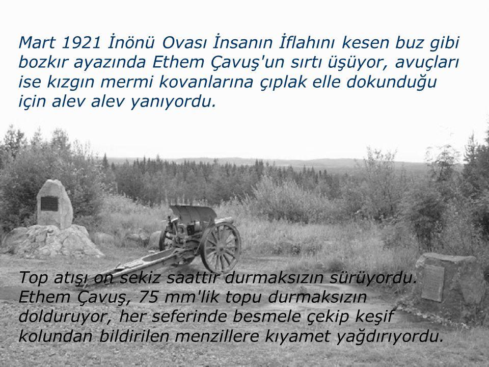 İnönü Üniversitesi Kimya Bölümü Malatya Gazi Kovan