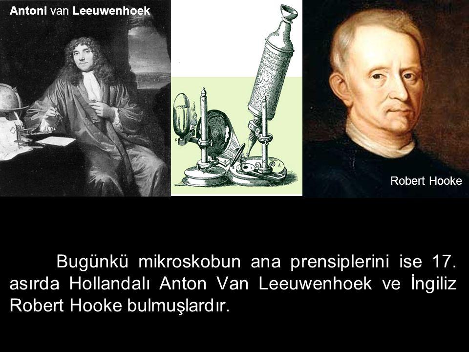 Bugünkü mikroskobun ana prensiplerini ise 17. asırda Hollandalı Anton Van Leeuwenhoek ve İngiliz Robert Hooke bulmuşlardır. Robert Hooke Antoni van Le