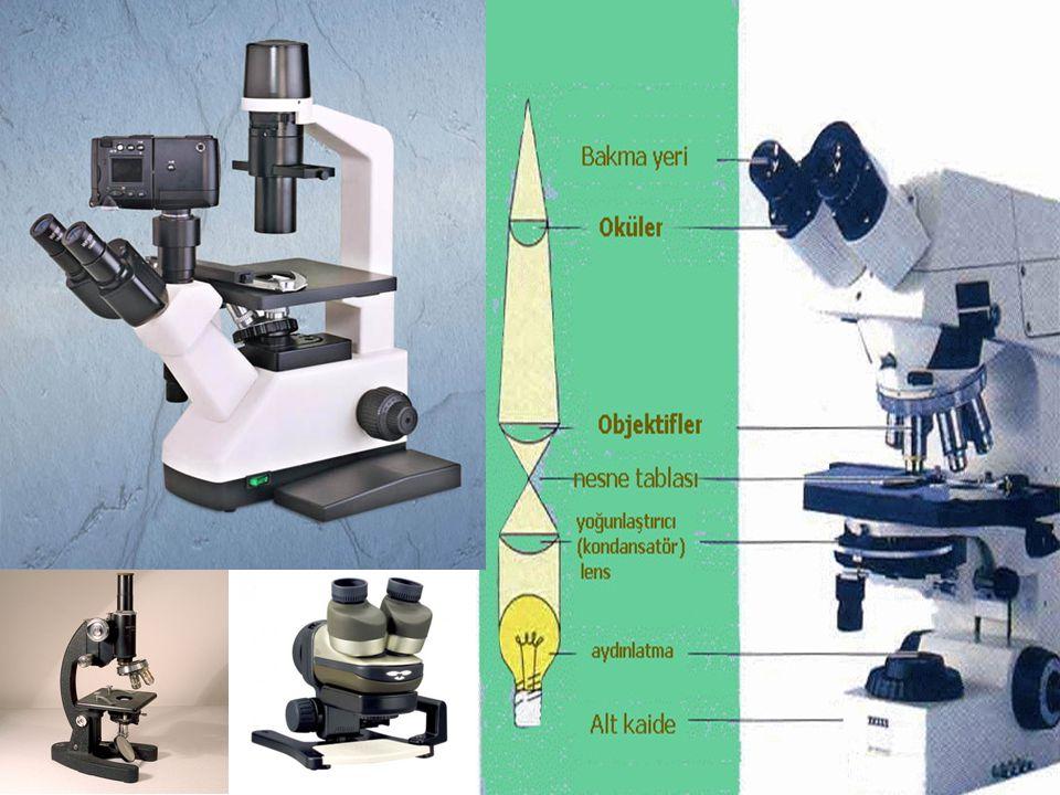 Mikroskobun Kullanılışı 1- Mikroskop genel anlamda gövde kolu ve alt kaide olmak üzere iki kısımdan oluşur.
