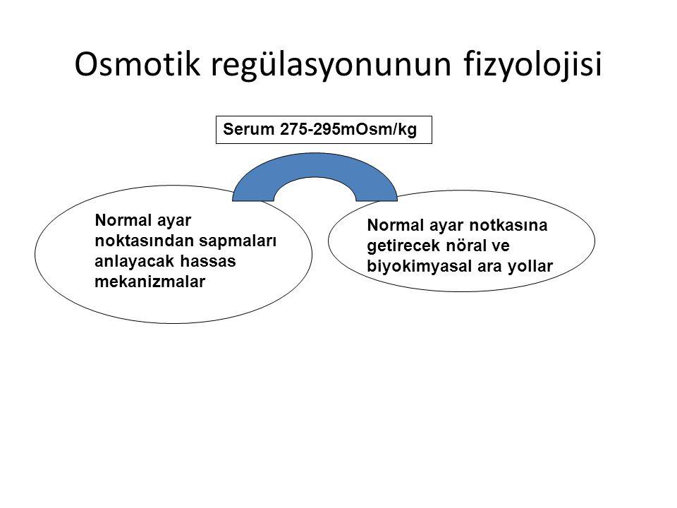 Santral sinir sistemi içindeki osmosensorleri iki efektör yolu denetler Susama Arka hipofizer AVP salınımı