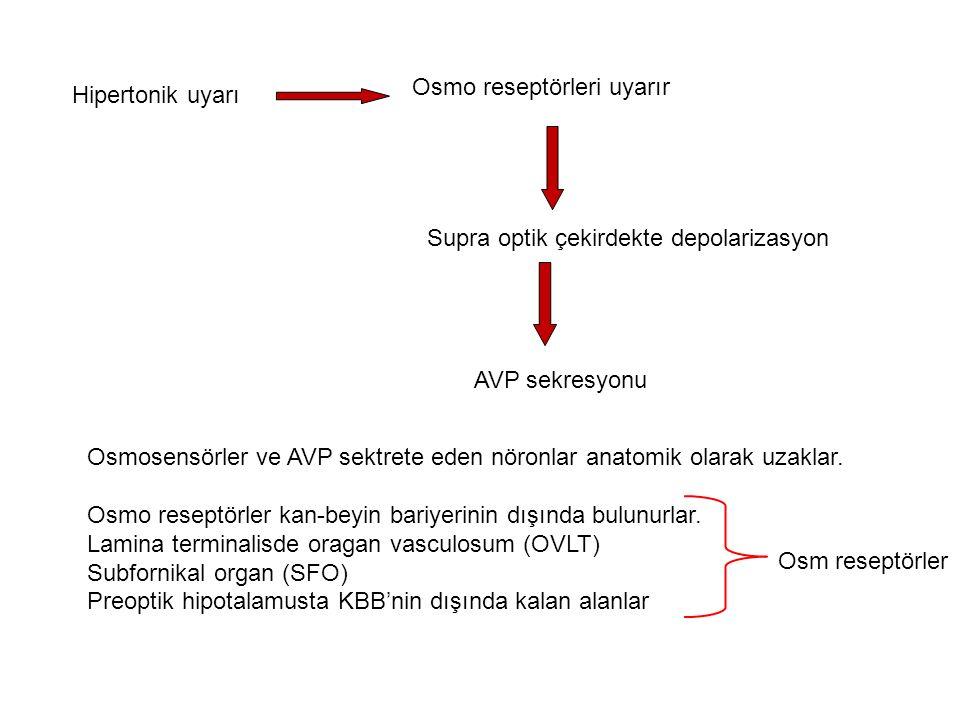Serum osmolalitesi < 280 mOsm /kg Plazma AVP sekresyonu < 1 pg/ml Serum osmolalitesi >283mOsm/kg (AVP sekresyonu için eşik) Serum Osm göre giderek AVP sekresyonu artar.