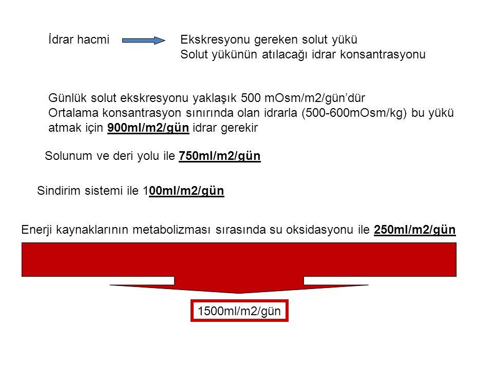 Günlük elektrolit gereksinimleri ElektrolitMiktar Sodyum20-50mEq/m2/gün Potasyum20-50mq/m2/gün Kalsiyum Term YD50-75mg/kg/gün Süt çocukları600mg/gün Çocuklar800mg/gün Adolesanlar1200mg/gün