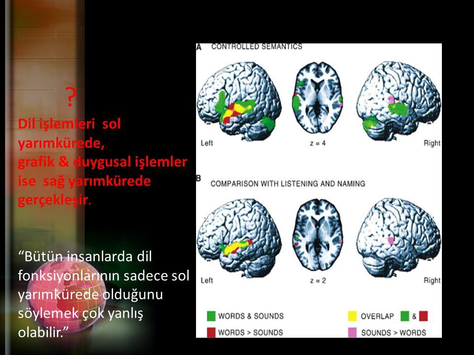 Dil işlemleri sol yarımkürede, grafik & duygusal işlemler ise sağ yarımkürede gerçekleşir.