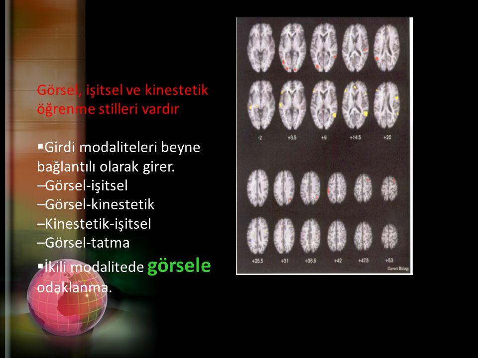 Görsel, işitsel ve kinestetik öğrenme stilleri vardır  Girdi modaliteleri beyne bağlantılı olarak girer.