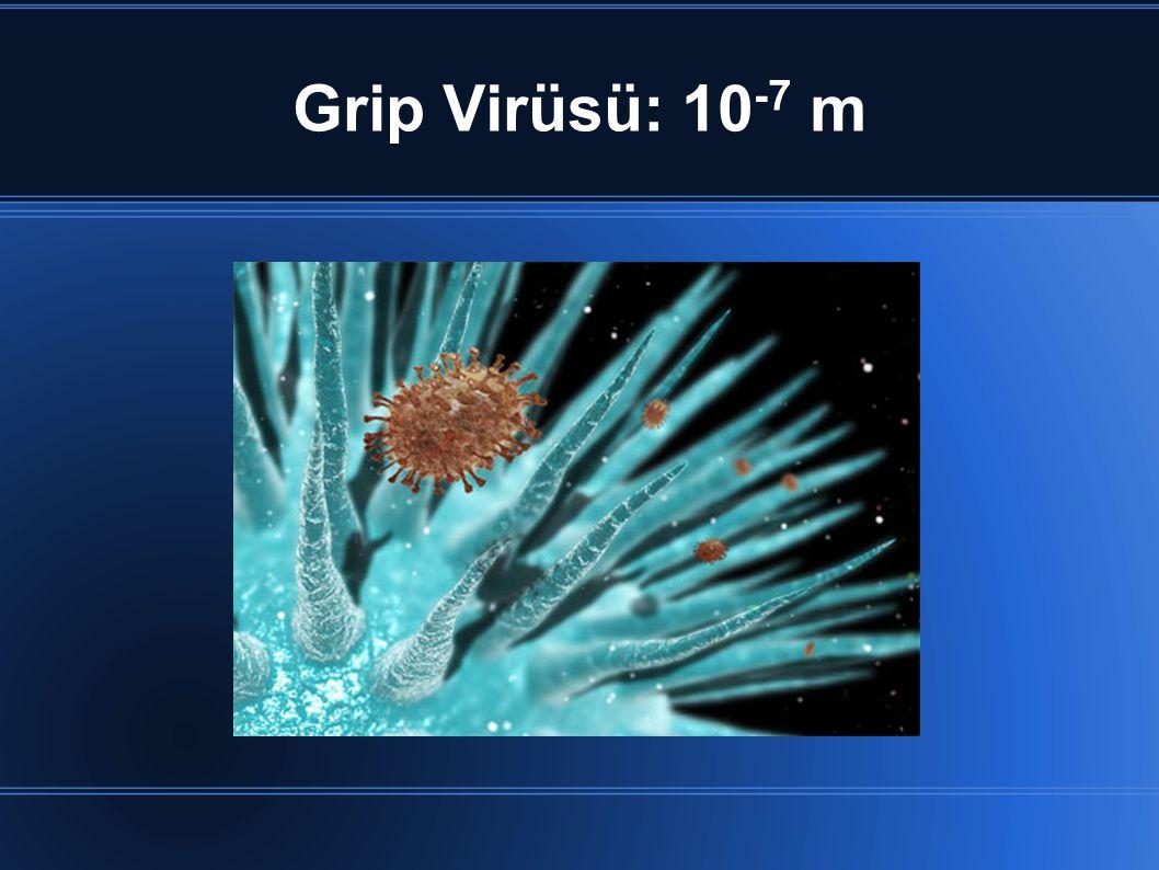 Grip Virüsü: 10 -7 m