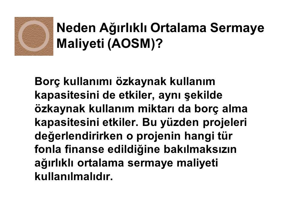 Neden Ağırlıklı Ortalama Sermaye Maliyeti (AOSM).