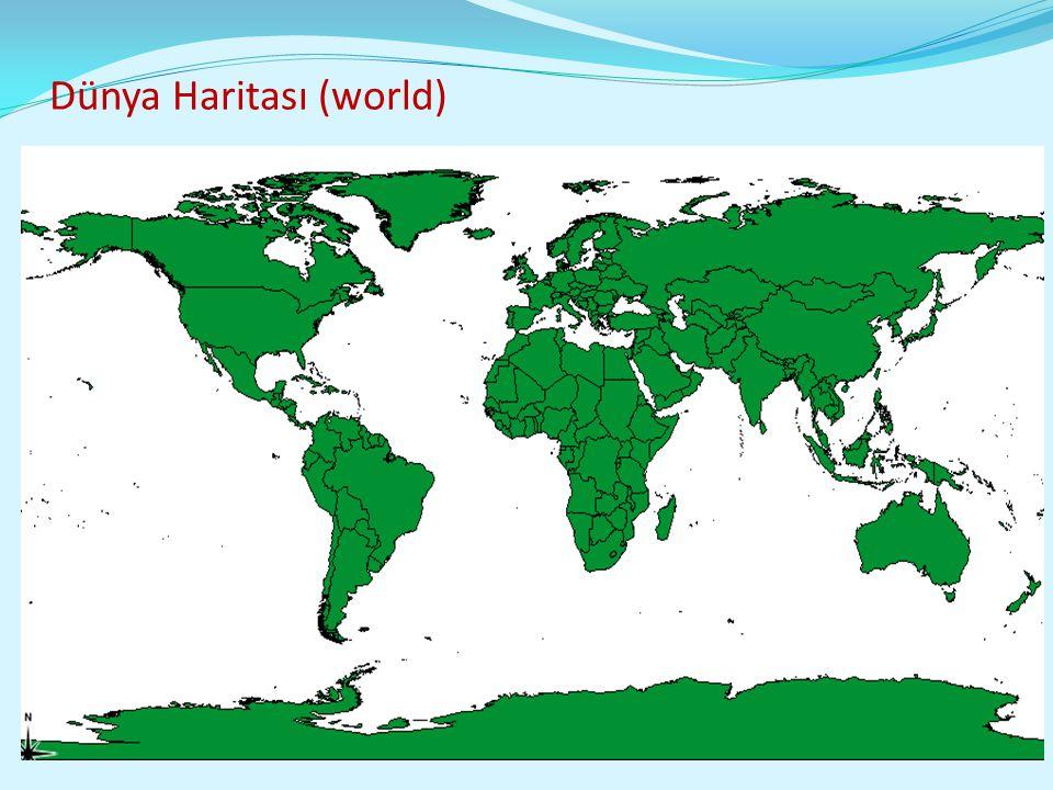 Dünya Haritası (world)