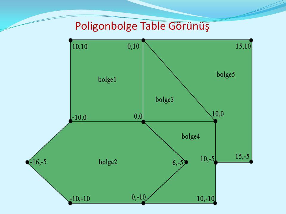 Poligonbolge Table Görünüş