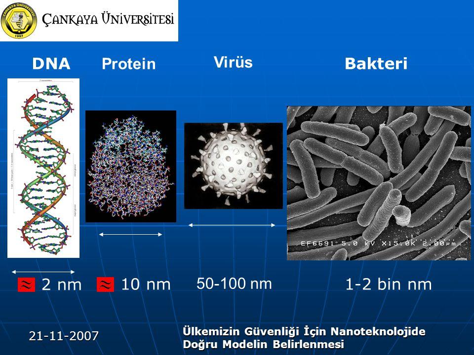 21-11-2007 Ülkemizin Güvenliği İçin Nanoteknolojide Doğru Modelin Belirlenmesi Virüs 50-100 nm 2 nm DNABakteri 1-2 bin nm Protein 10 nm