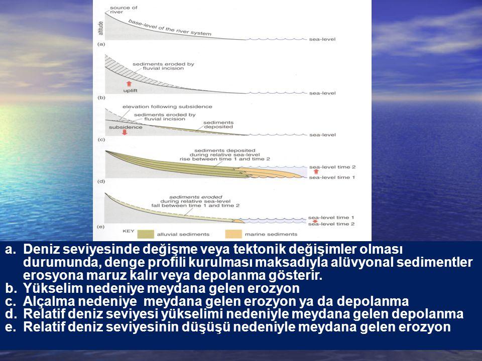 a.Deniz seviyesinde değişme veya tektonik değişimler olması durumunda, denge profili kurulması maksadıyla alüvyonal sedimentler erosyona maruz kalır v