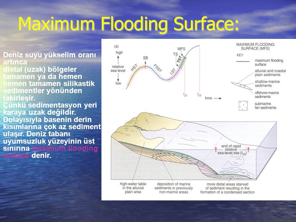 Maximum Flooding Surface: Deniz suyu yükselim oranı artınca distal (uzak) bölgeler tamamen ya da hemen hemen tamamen silikastik sedimentler yönünden f