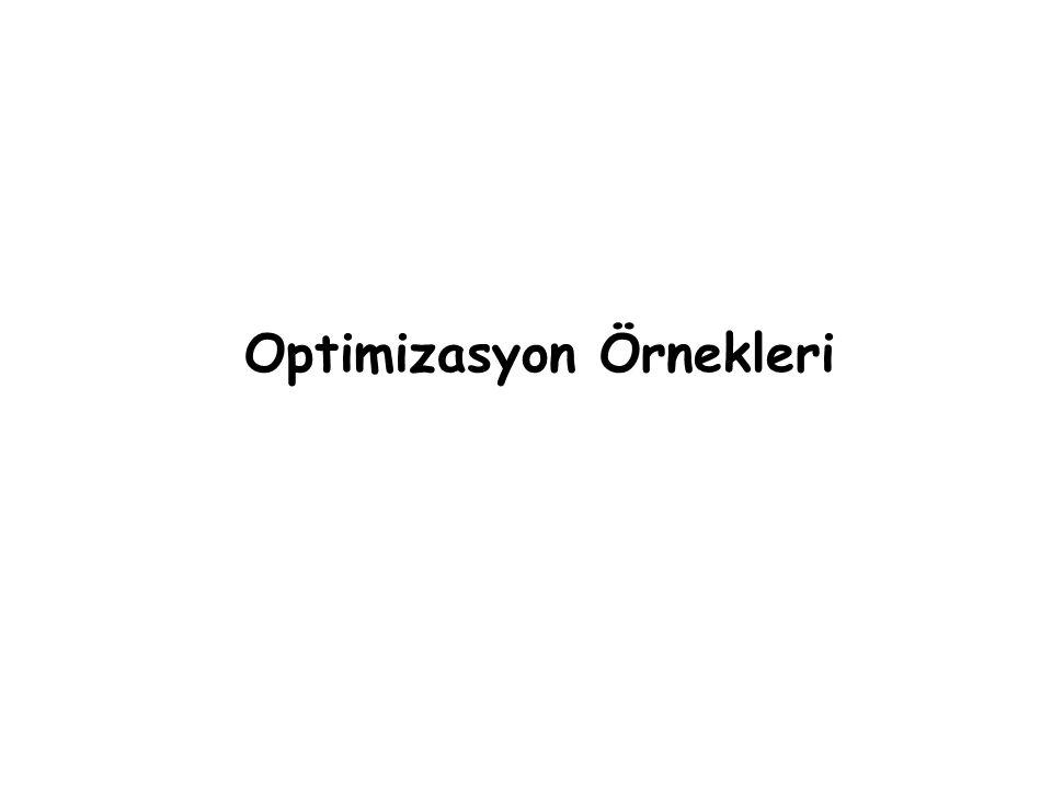 Optimizasyon Örnekleri