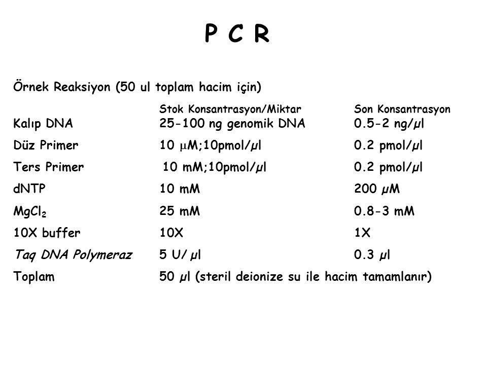 P C RP C R Örnek Reaksiyon (50 ul toplam hacim için) Stok Konsantrasyon/MiktarSon Konsantrasyon Kalıp DNA 25-100 ng genomik DNA0.5-2 ng/µl Düz Primer