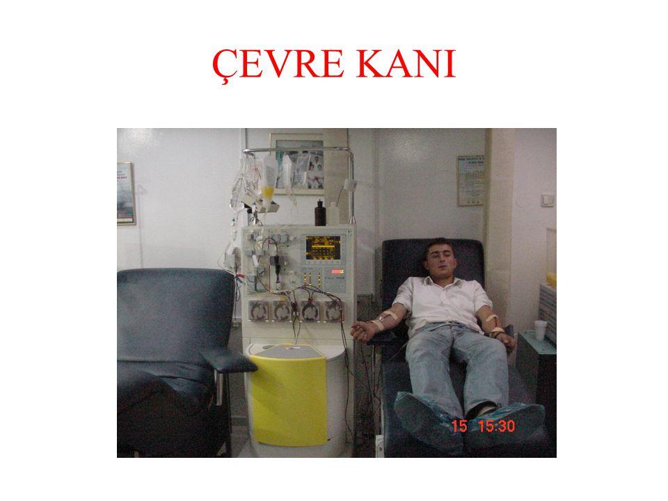 ÇEVRE KANI