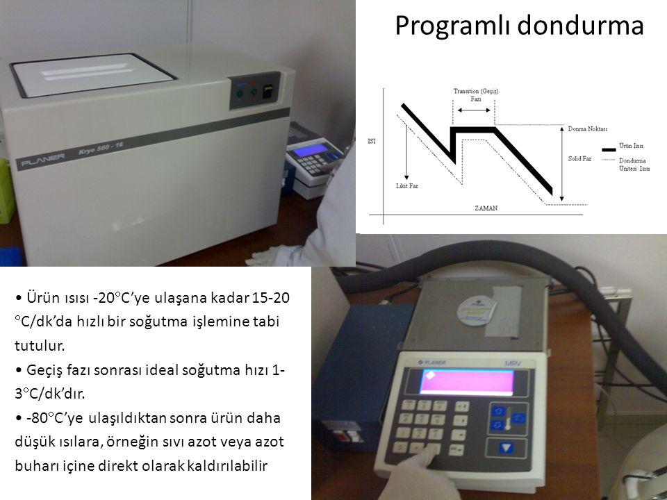 Programlı dondurma Ürün ısısı -20  C'ye ulaşana kadar 15-20  C/dk'da hızlı bir soğutma işlemine tabi tutulur. Geçiş fazı sonrası ideal soğutma hızı
