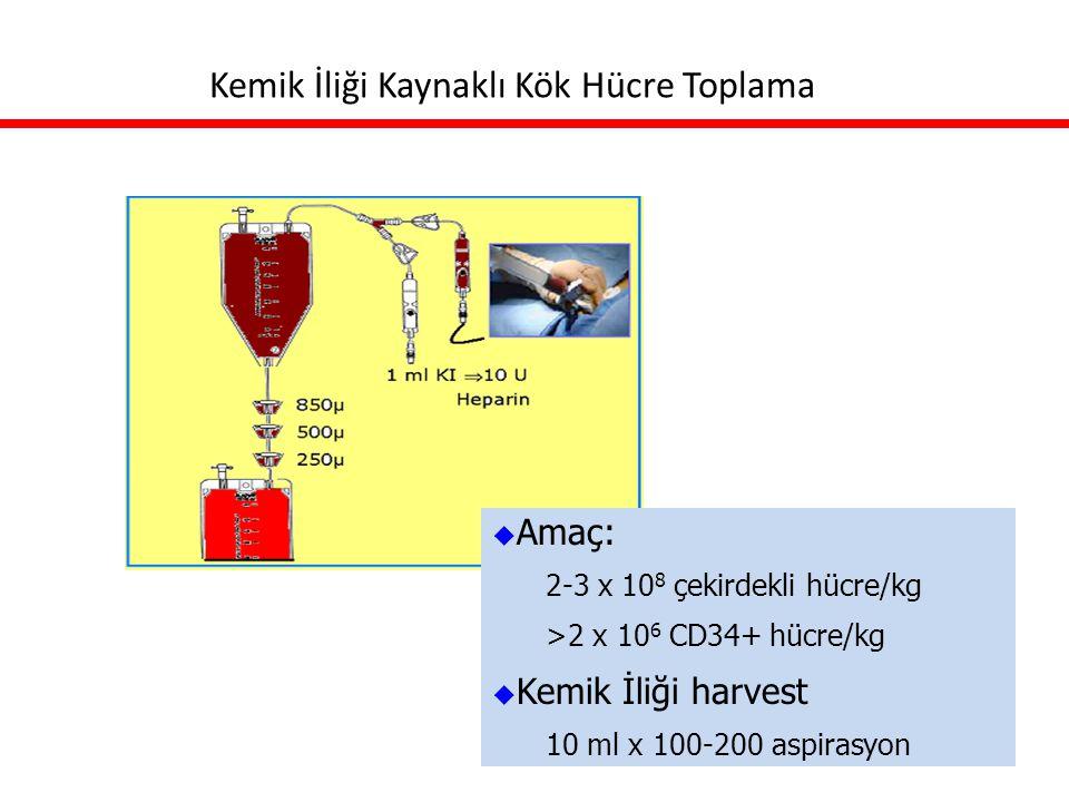 Kemik İliği Kaynaklı Kök Hücre Toplama  Amaç: 2-3 x 10 8 çekirdekli hücre/kg >2 x 10 6 CD34+ hücre/kg  Kemik İliği harvest 10 ml x 100-200 aspirasyo