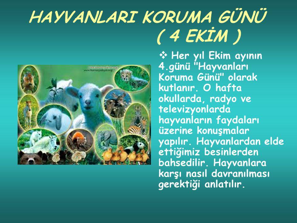 HAYVANLARI KORUMA GÜNÜ ( 4 EKİM )  Her yıl Ekim ayının 4.günü Hayvanları Koruma Günü olarak kutlanır.