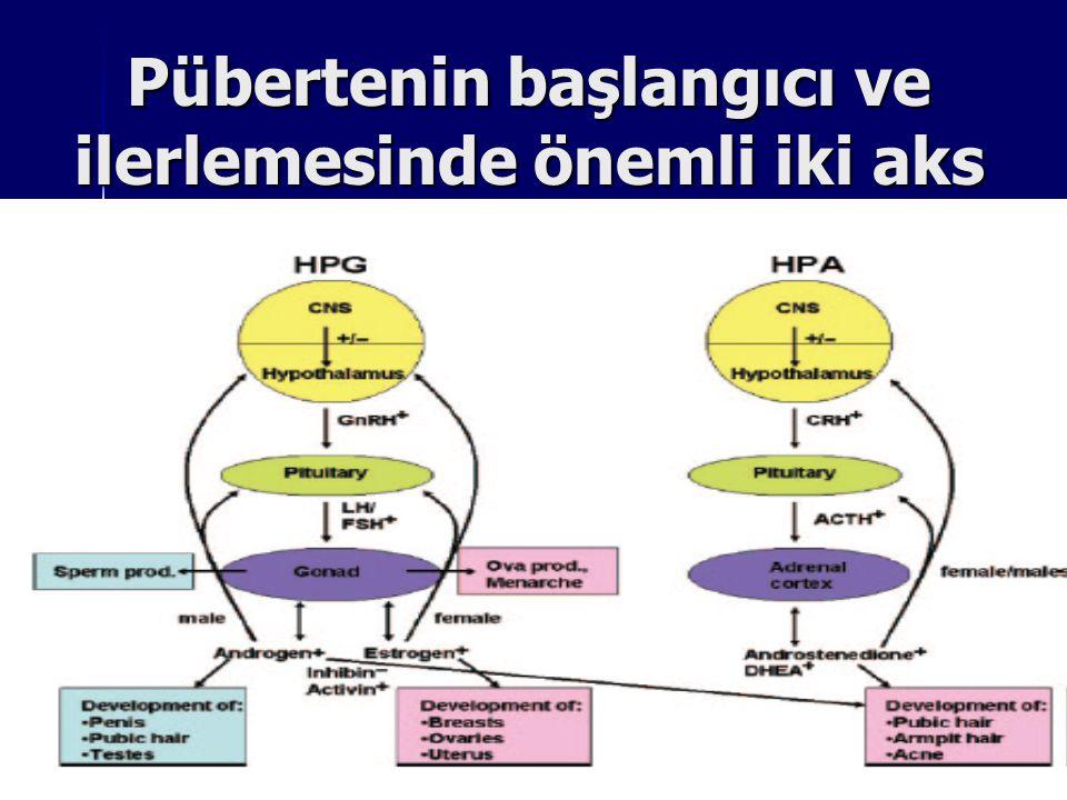 HIZLI İLERLEYEN SANTRAL ERKEN PUBERTE Uterus volümü ≥ 5 cm3, Uterus volümü ≥ 5 cm3, LH peak ≥ 7 IU/L, LH peak ≥ 7 IU/L, Endometrium kalınlaşması Endometrium kalınlaşması E2 düzeyleri ≥ 25 pg/mL E2 düzeyleri ≥ 25 pg/mL Kemik yaşı > 2 SD Kemik yaşı > 2 SD Ultrasonda meme volümü ≥ 0.85 cm3 Ultrasonda meme volümü ≥ 0.85 cm3