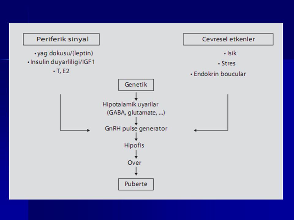 YALANCI ERKEN PÜBERTE NEDENLERİ GENETİK GENETİK –McCune Albright Sendromu (kızlarda) TÜMÖRLER TÜMÖRLER –Östrojen ve androjen salgılayan tümörler (Granülosa hücreli tümör) –Uzun süreli östrojen maruziyeti ile gerçek puberteye dönüşür.