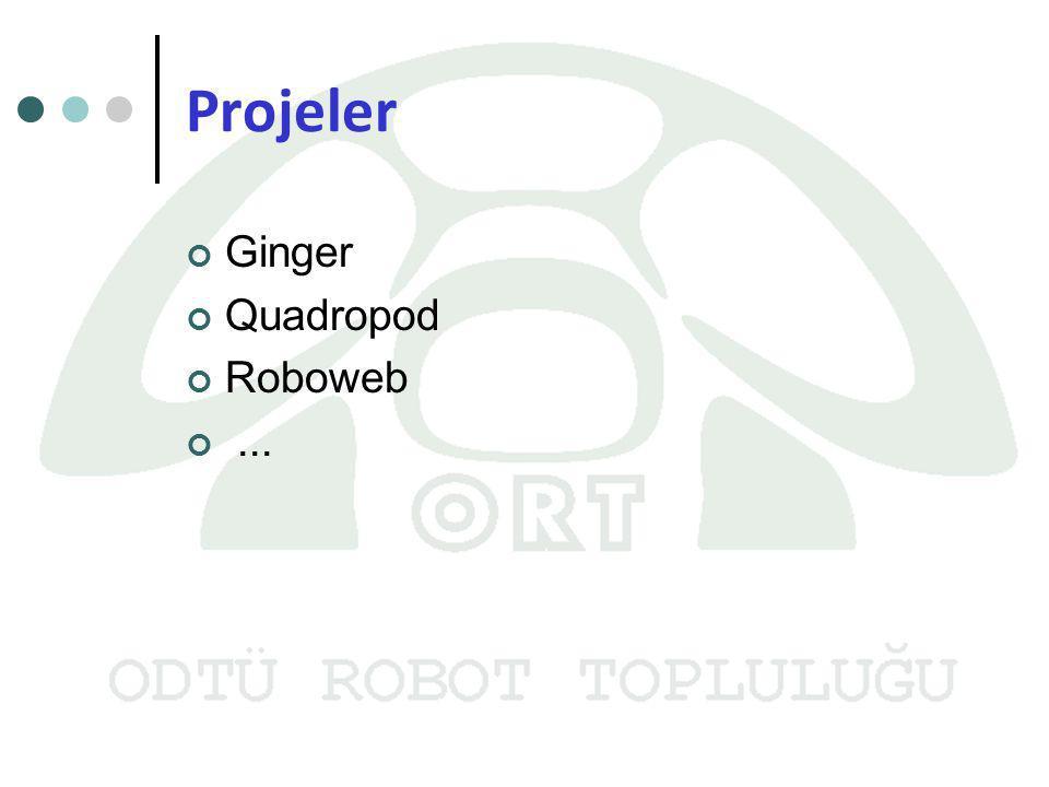 Projeler Ginger Quadropod Roboweb...