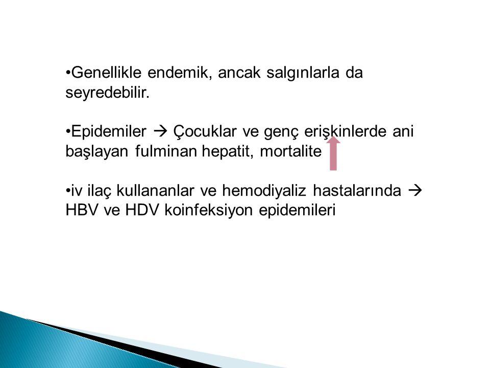 SüperinfeksiyonSüperinfeksiyon Süperinfeksiyonda HDV Ag ve HDV RNA serumda saptanabilir.
