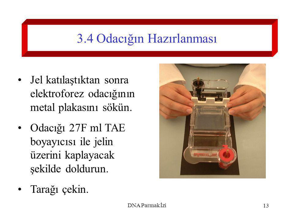 14 4.DNA Markerının Hazırlanması Pipet ile 10 µl tamponu (LB) 10 µl marker'a (M) ekleyin.