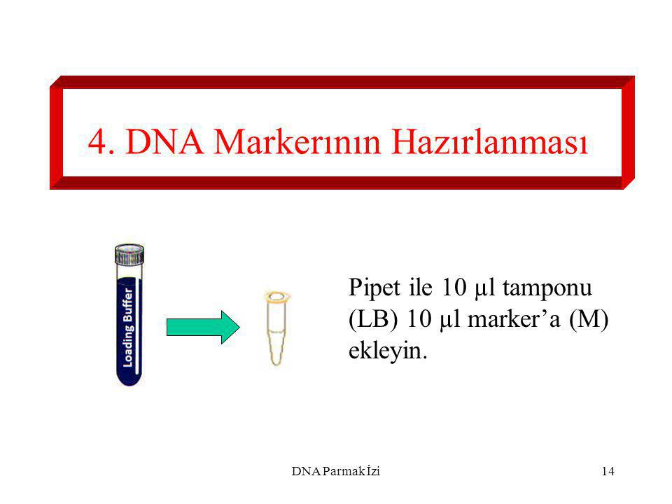 15 5. 10 µl Tamponun Eklenmesi 10 µl tamponu CS ve S1- S5'e pipet ile ekleyin. 10 µl DNA Parmak İzi