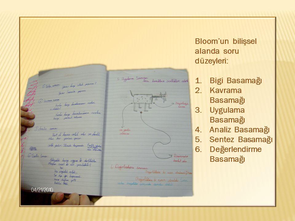 Bloom'un bilişsel alanda soru düzeyleri: 1.Bigi Basamağı 2.Kavrama Basamağı 3.Uygulama Basamağı 4.Analiz Basamağı 5.Sentez Basamağı 6.Değerlendirme Basamağı