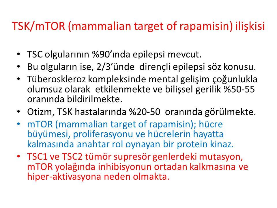 TSK/mTOR (mammalian target of rapamisin) ilişkisi TSC olgularının %90'ında epilepsi mevcut.