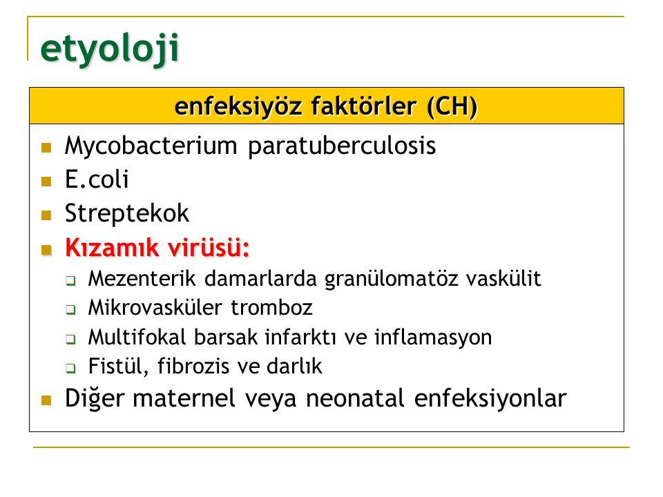 etyoloji Mycobacterium paratuberculosis E.coli Streptekok Kızamık virüsü: Kızamık virüsü:  Mezenterik damarlarda granülomatöz vaskülit  Mikrovasküle