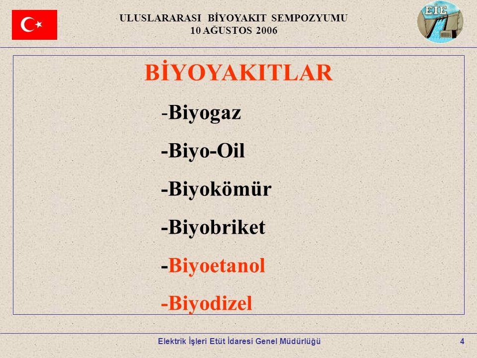 4 BİYOYAKITLAR -Biyogaz -Biyo-Oil -Biyokömür -Biyobriket -Biyoetanol -Biyodizel ULUSLARARASI BİYOYAKIT SEMPOZYUMU 10 AĞUSTOS 2006 Elektrik İşleri Etüt