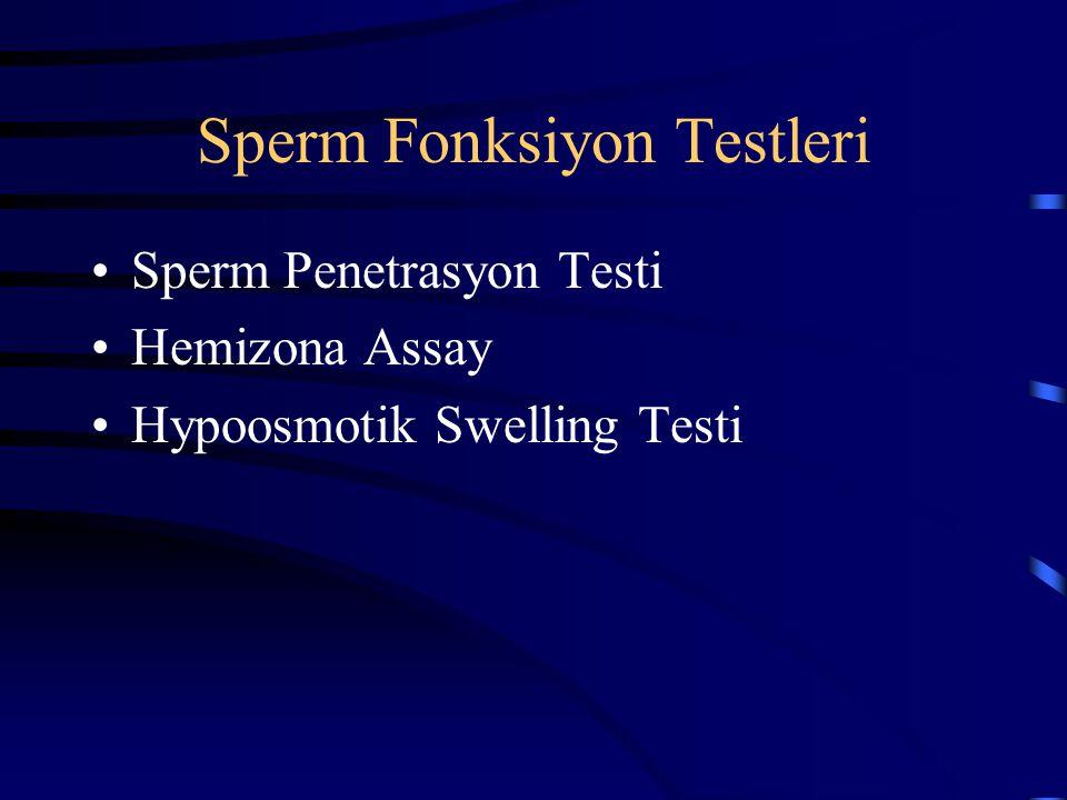 Sperm Fonksiyon Testleri Sperm Penetrasyon Testi Hemizona Assay Hypoosmotik Swelling Testi