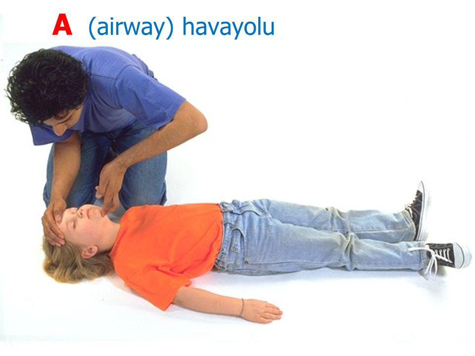 24 A (airway) havayolu