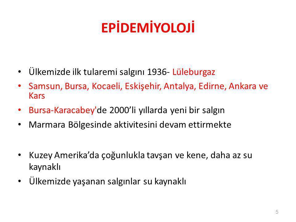 EPİDEMİYOLOJİ Ülkemizde ilk tularemi salgını 1936- Lüleburgaz Samsun, Bursa, Kocaeli, Eskişehir, Antalya, Edirne, Ankara ve Kars Bursa-Karacabey'de 20