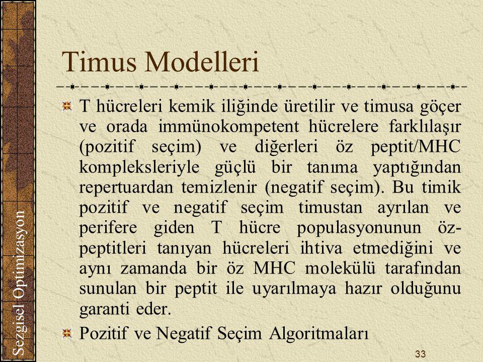 Sezgisel Optimizasyon 33 Timus Modelleri T hücreleri kemik iliğinde üretilir ve timusa göçer ve orada immünokompetent hücrelere farklılaşır (pozitif seçim) ve diğerleri öz peptit/MHC kompleksleriyle güçlü bir tanıma yaptığından repertuardan temizlenir (negatif seçim).