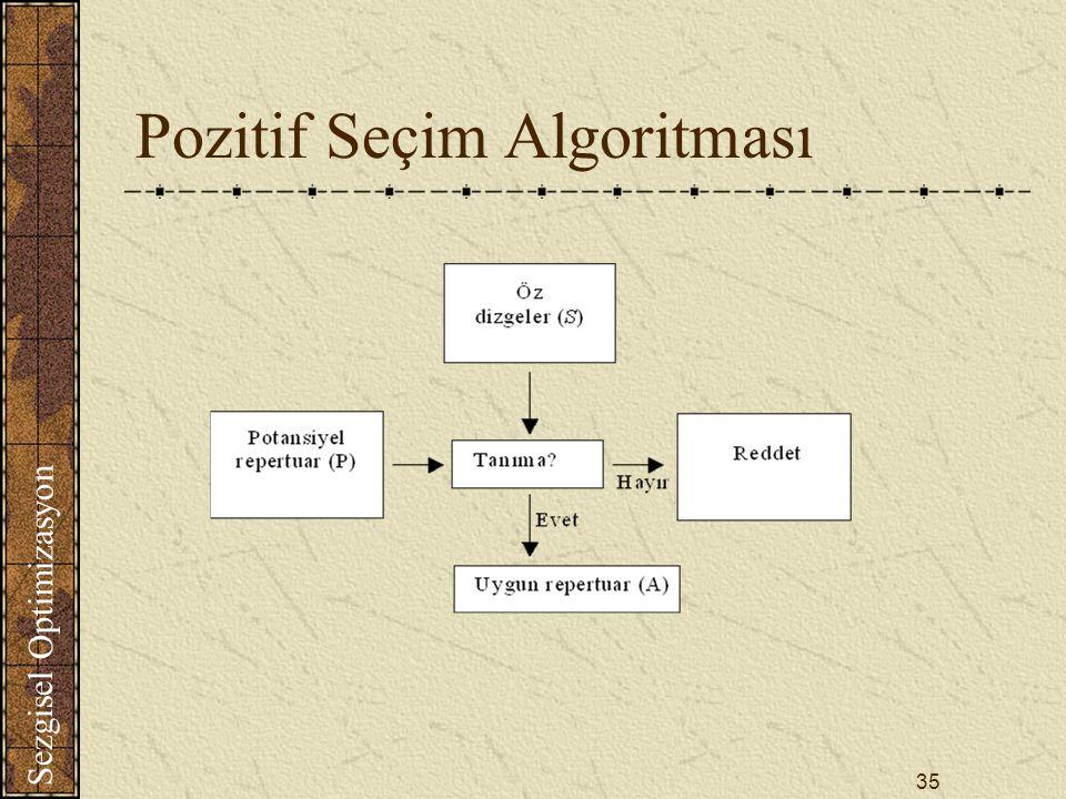 Sezgisel Optimizasyon 35 Pozitif Seçim Algoritması