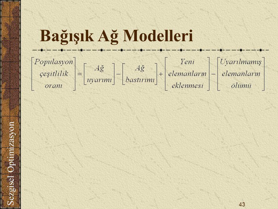 Sezgisel Optimizasyon 43 Bağışık Ağ Modelleri