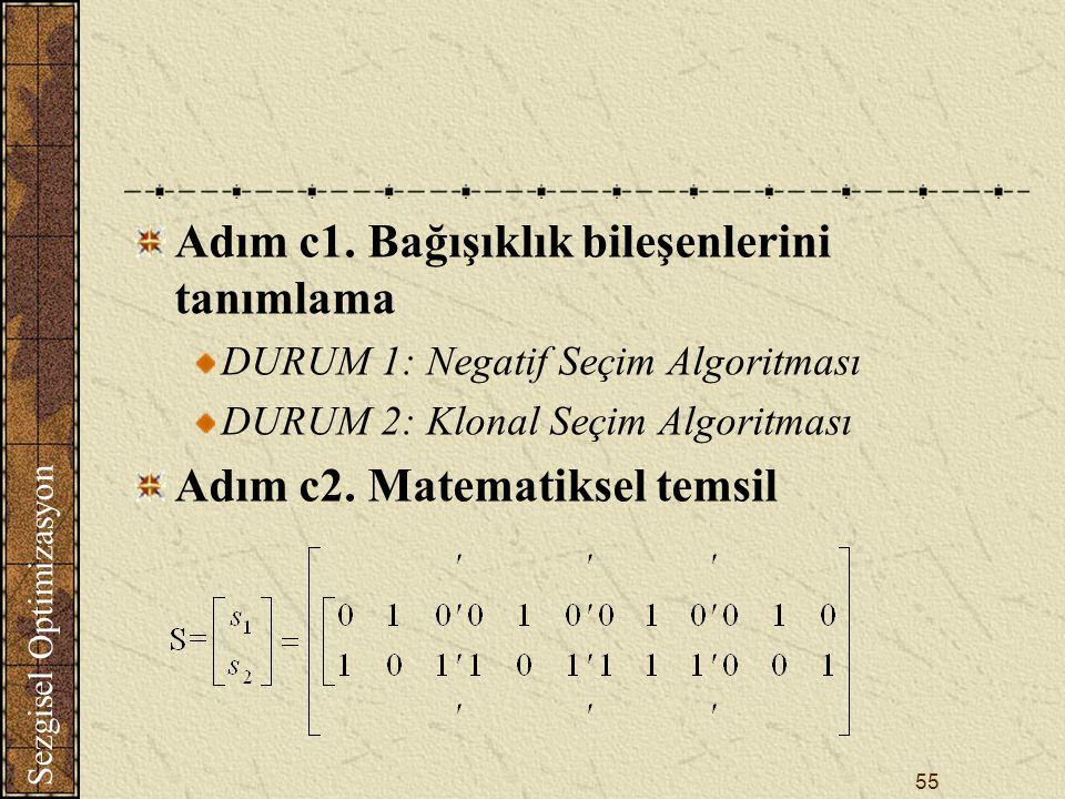 Sezgisel Optimizasyon 55 Adım c1.