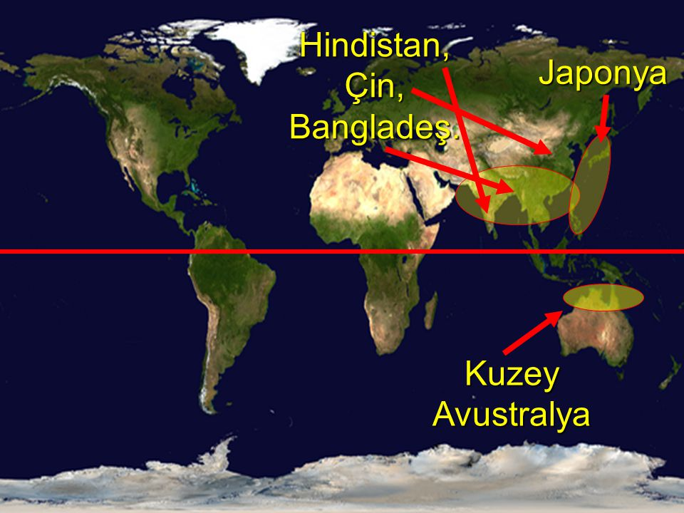 Japonya Kuzey Avustralya Hindistan, Çin, Bangladeş.