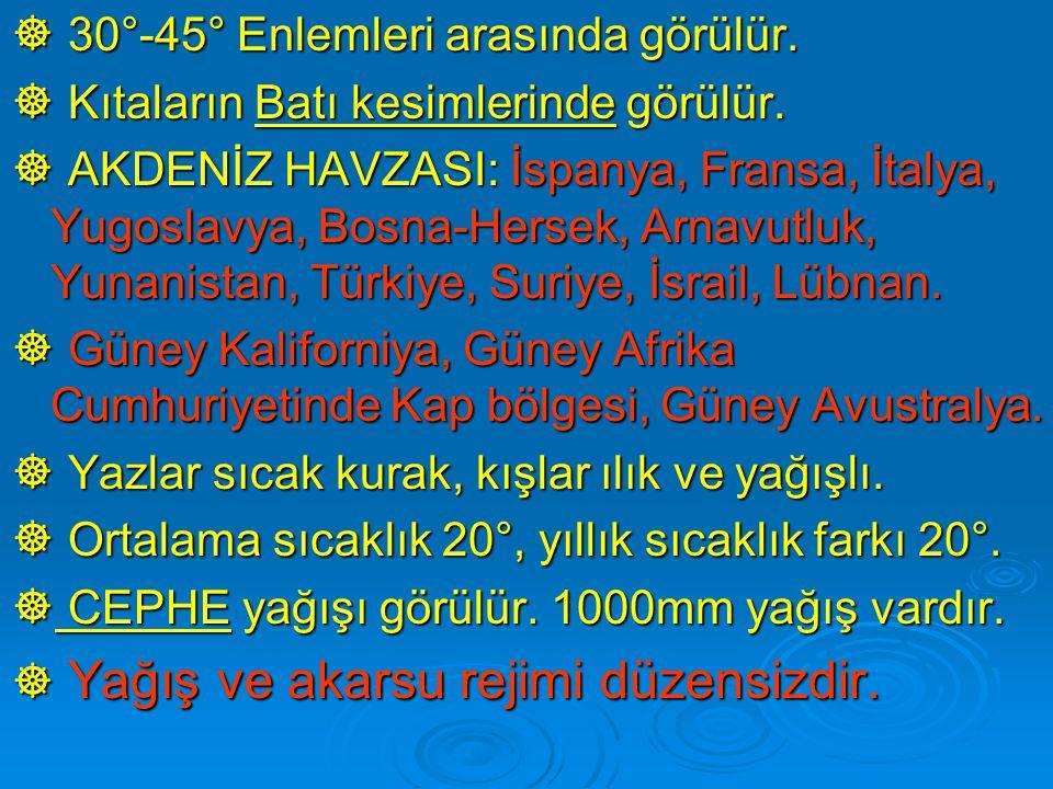  30°-45° Enlemleri arasında görülür.  Kıtaların Batı kesimlerinde görülür.  AKDENİZ HAVZASI: İspanya, Fransa, İtalya, Yugoslavya, Bosna-Hersek, Arn