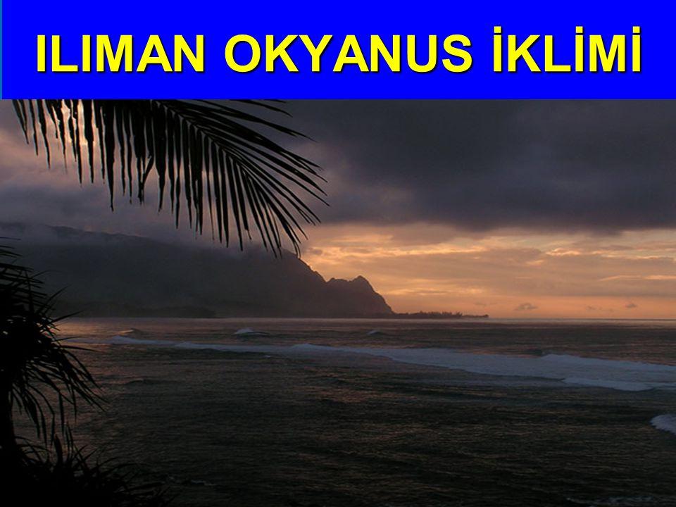 ILIMAN OKYANUS İKLİMİ