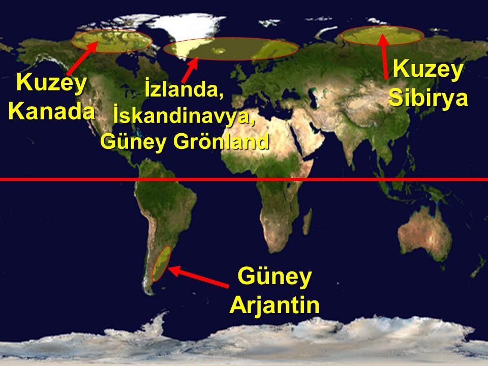 Kuzey Kanada Güney Arjantin İzlanda, İskandinavya, Güney Grönland Kuzey Sibirya